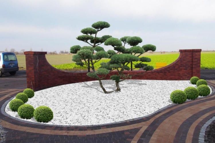 Rabata z bonsai.