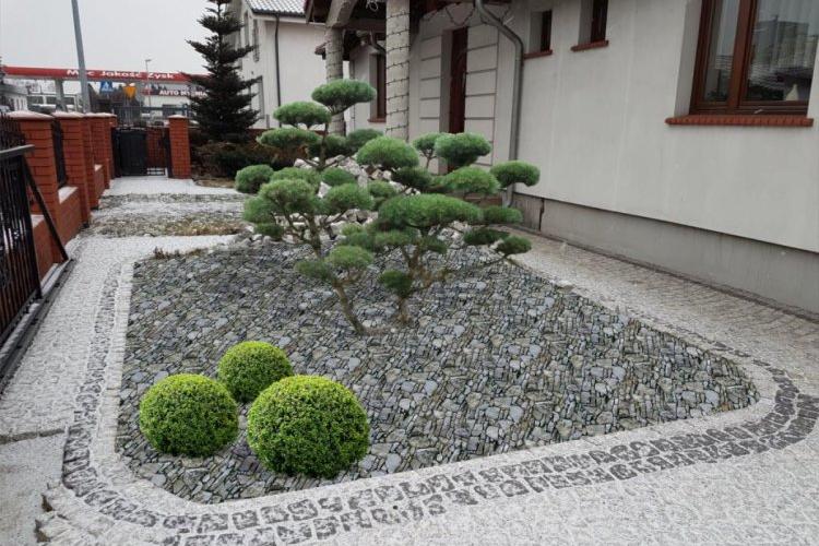 Bonsai przed domem
